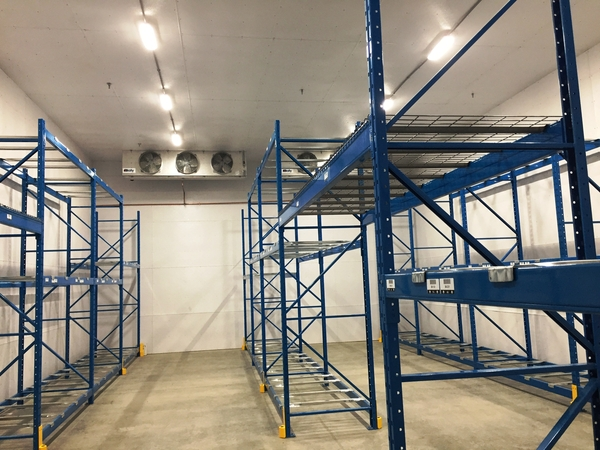 New 30'x50' freezer added to the warehouse in March 2017